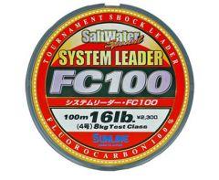System Leader FC 100 100m